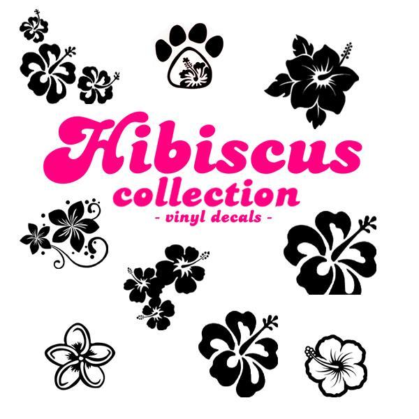 1.HIBISCUS-title1