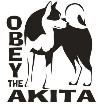 OBEYakita